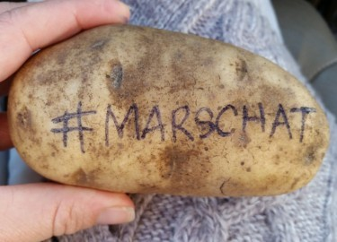 marschat potato
