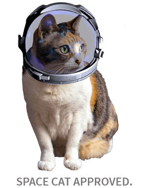 Space Cat Dream BIG! How to reach for your stars