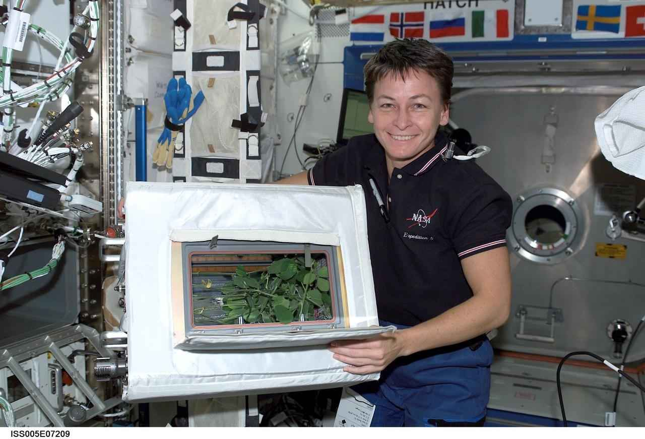 Astronaut Abby_Astronaut with Science Experiment Image_Failures of Astronauts